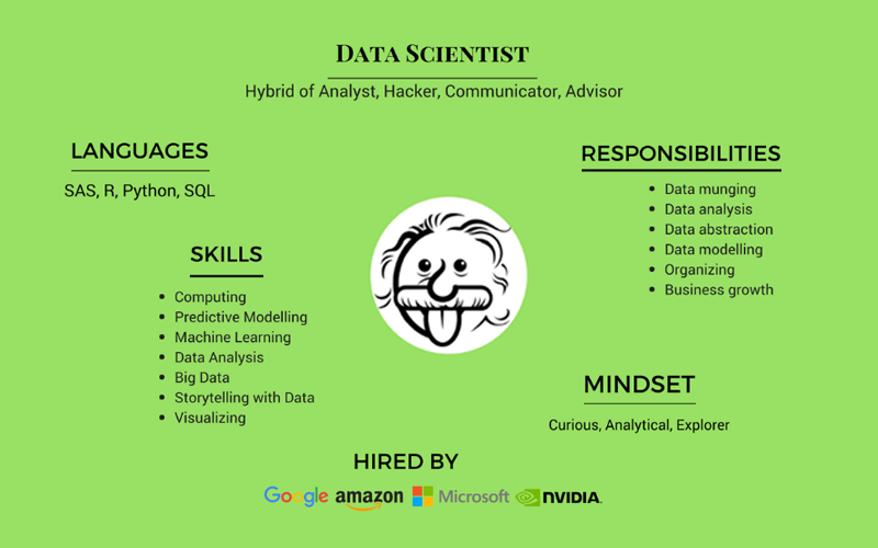 A Data Scientist