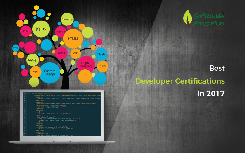 Top Developer Certifications In 2017 Springpeople Blog