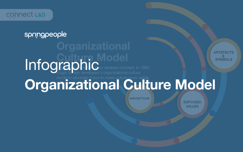 Infographic: Organizational Culture Model